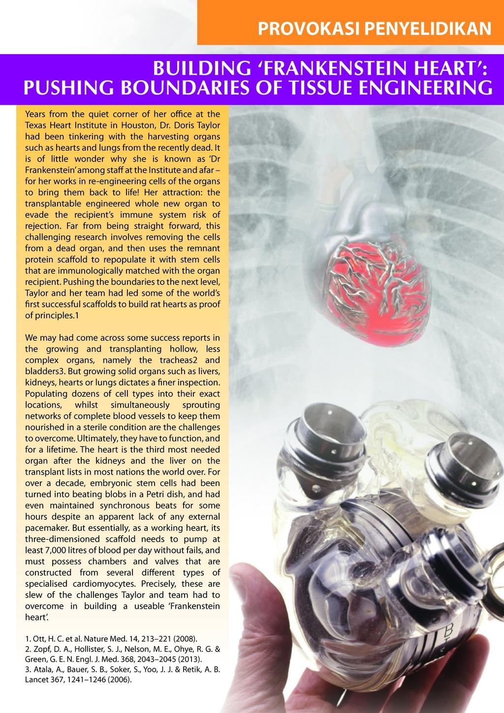 pulsemedikscom technical dec 2013_page_06
